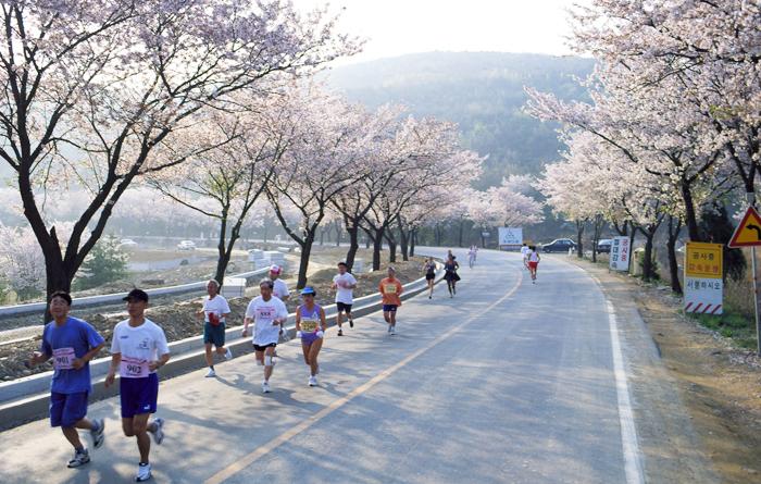 gyeongju-marathon