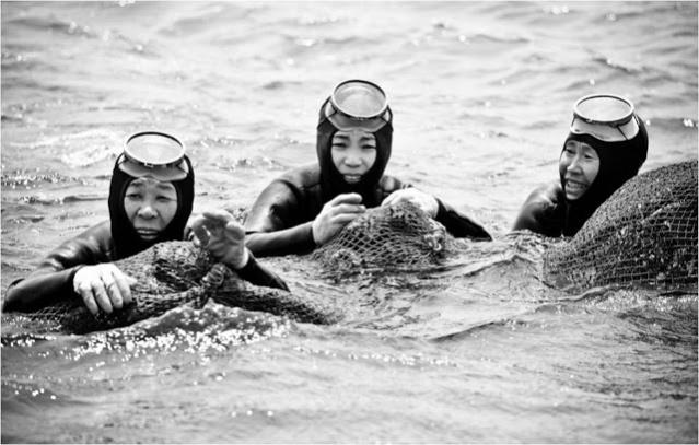haenyu jeju island korea women divers 19