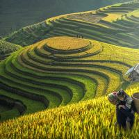 KNOW EVERYTHING ABOUT SAPA: VIETNAM